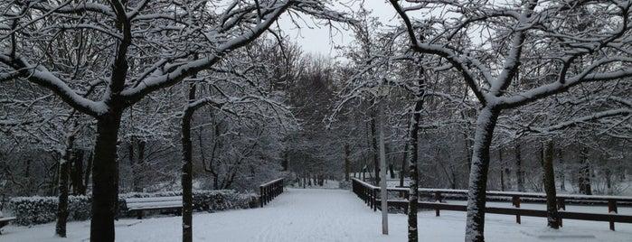 Middenhoven Park is one of Lugares favoritos de Greg.
