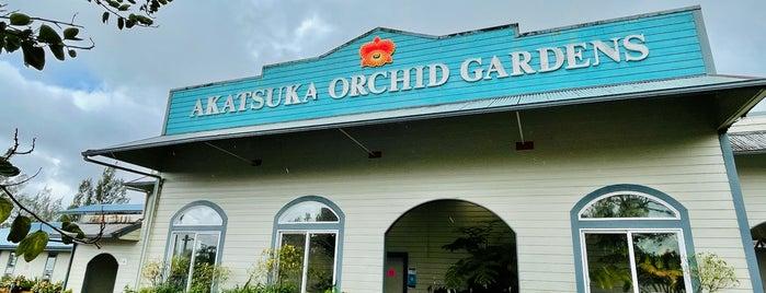 Akatsuka Orchid Gardens is one of HAWAII.