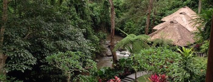 Maya Ubud Resort & Spa is one of Hnmn.