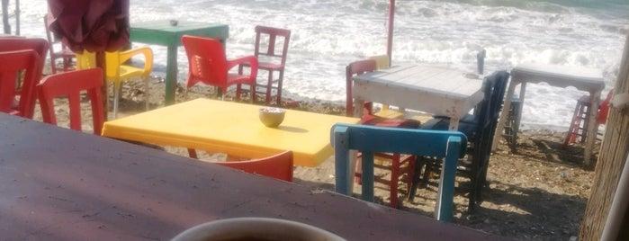 zeytinalan manzara kahve is one of Gülşah 님이 좋아한 장소.