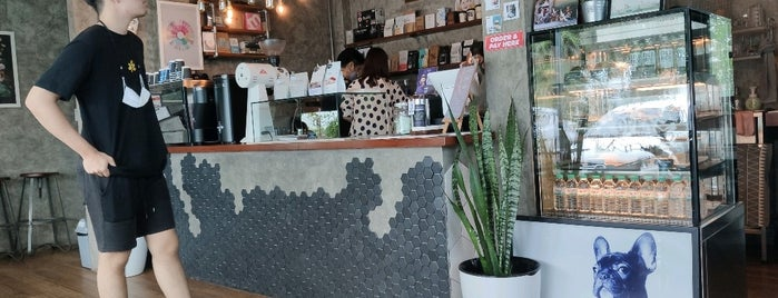 Grafika Specialty Coffee is one of 07_ตามรอย_coffee.