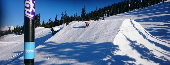 Nintendo Choker Terrain Park is one of Extrim.