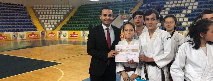 Rize Yeni Şehir Spor Salonu is one of Locais curtidos por Dilara.