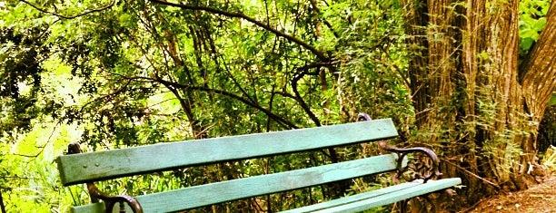 Reserva Ecológica Costanera Sur is one of Outdoor Activity in BAires.