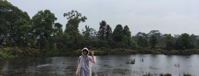 Anodard Pond is one of ขอนแก่น, ชัยภูมิ, หนองบัวลำภู, เลย.