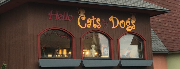 Hello Cats and Dogs is one of Ben's Liked Places.