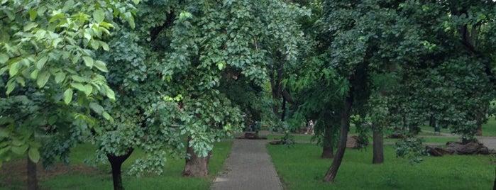 Сквер космонавтов is one of Ольга : понравившиеся места.