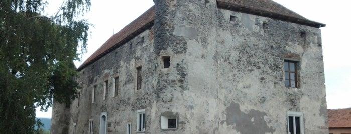 Чинадіївський замок (Сент-Міклош) is one of สถานที่ที่บันทึกไว้ของ Ника.