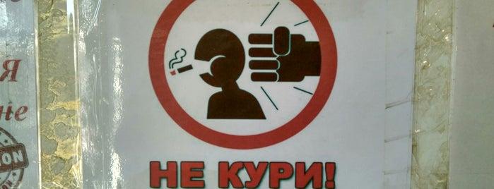 Шымкент / Shymkent is one of Orte, die Bonny gefallen.