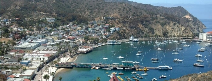 Santa Catalina Island is one of E: сохраненные места.
