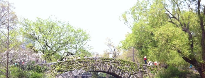 Central Park is one of Best Places in NYC.