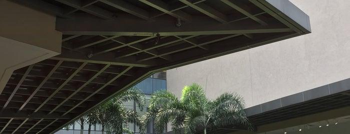 Ayala Malls Vertis North is one of Shankさんのお気に入りスポット.