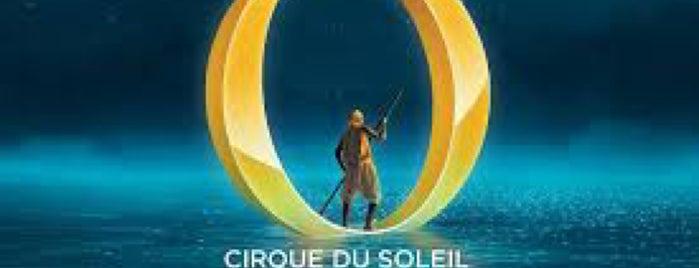 """""""O"""" By Cirque Du Soleil is one of Orte, die Bret gefallen."""