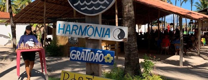 Praia do Toque - Rota Ecológica dos Milagres is one of Locais curtidos por Mil e Uma Viagens.