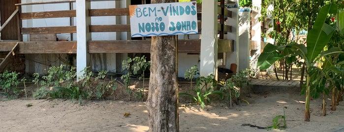 Milagres Do Toque Beach Club is one of Locais curtidos por Paola.