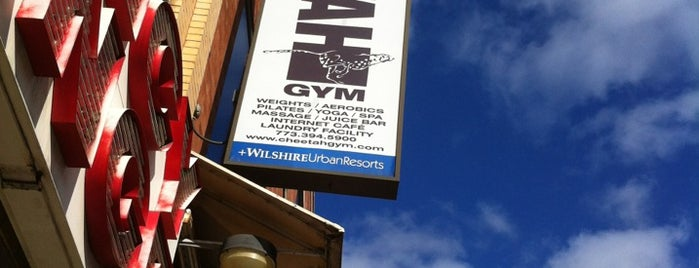 Cheetah Gym is one of Locations.