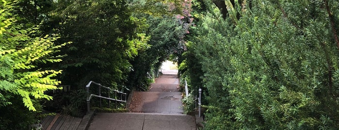 E Howe Street Stairs is one of Jamesさんのお気に入りスポット.