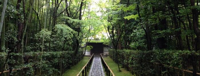 JJ: Kyoto x Tokyo