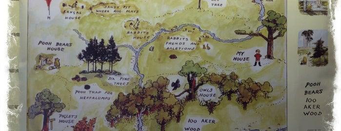 100 Acre Wood is one of ЛОНДРЕСОвое.