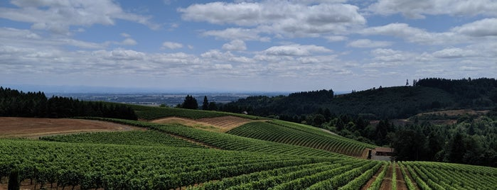 Bella Vida Vineyard is one of Portland.