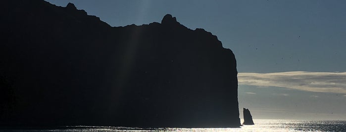 Vestmannaeyjar is one of Daníel Sigurður 님이 좋아한 장소.