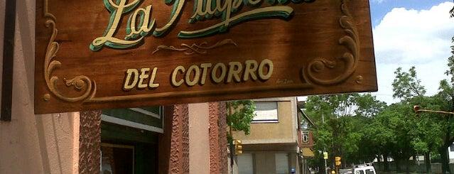 La Pulpería del Cotorro is one of Comer.