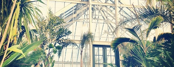 Biltmore Conservatory is one of Must-visit Arts & Culture venues.