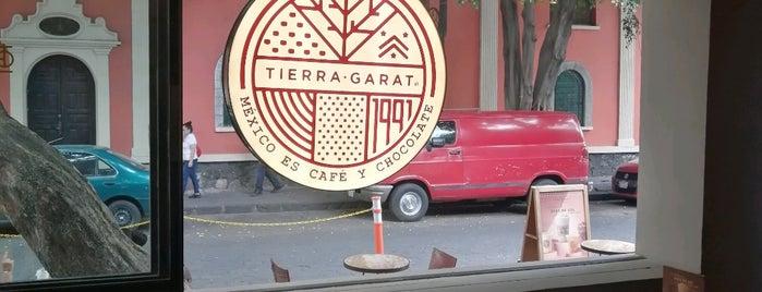 Tierra Garat Coyoacán is one of Cafeterías.