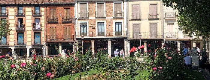 Alcalá de Henares is one of Lugares favoritos de Mym.