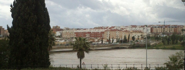 Puente De La Autonomía is one of Guide to Badajoz's best spots.