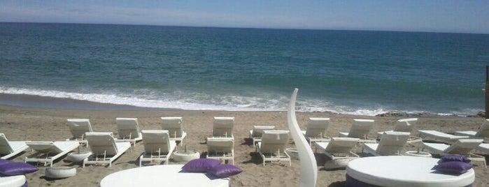 Maui Beach is one of Locais salvos de Tina.