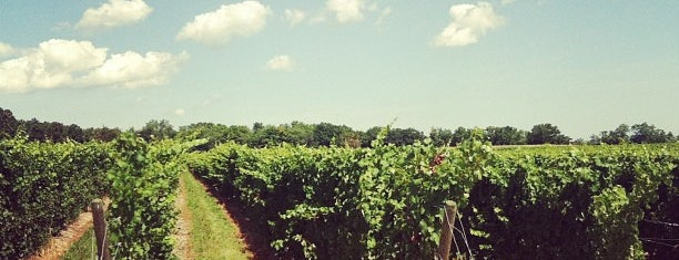 Fox Run Vineyards is one of Finger Lakes Wine Trail & Some.