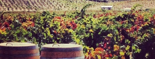 Ridge Vineyards - Lytton Springs is one of West Coast Road Trip.
