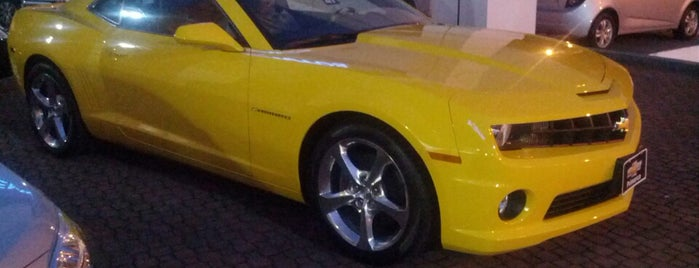 Chevrolet Primarca is one of Dealers.