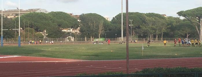 "Stadio Stella Polare ""Pasquale Giannatasio"" is one of Rugby."