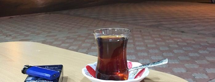 Yeşilyurt Kokoreç is one of Gittiğim Yerler.