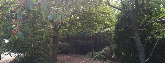 West Andersonville Gardens is one of Gespeicherte Orte von Tiffany.