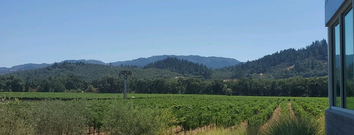 Titus Vineyards is one of Napa vineyards.