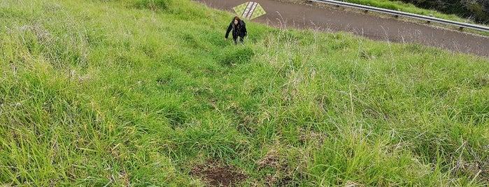 Mount Eden is one of NZ.