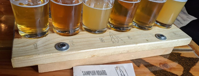 Backwoods Brewing Company is one of Breweries I've been to..