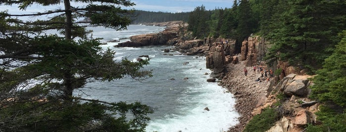 Acadia Nationalpark is one of America's Top Hiking Trail in Each State.