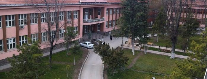 T.C Türkiye Halk Sağlığı Kurumu is one of Dilek'in Beğendiği Mekanlar.