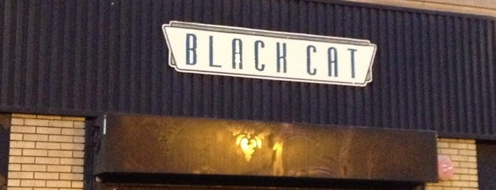 Black Cat is one of Concert Venues.