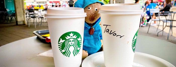 Starbucks is one of Max 님이 좋아한 장소.