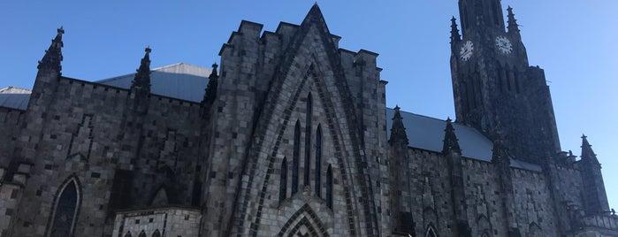 Igreja Nossa Senhora de Lourdes is one of Orte, die Mariana gefallen.