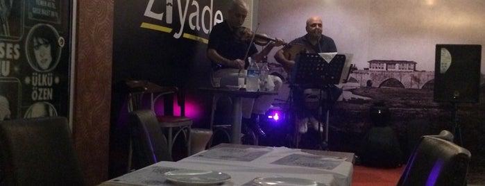 Ziyade Meyhane is one of UĞUR : понравившиеся места.