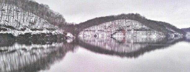 Croton Reservoir is one of Posti che sono piaciuti a Foxxy.