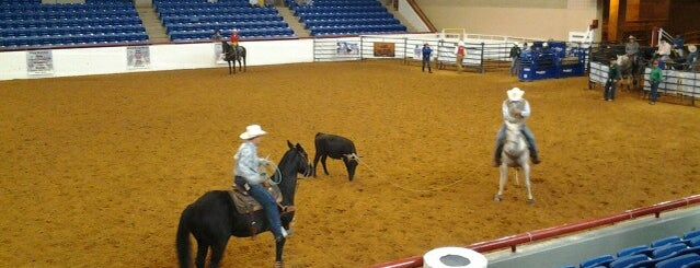 Will Rogers Equestrian Center is one of Dallas Favorites.