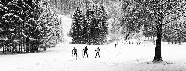 Falcade is one of Dove sciare.