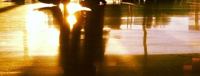 Gate 43 is one of Posti che sono piaciuti a Alberto J S.